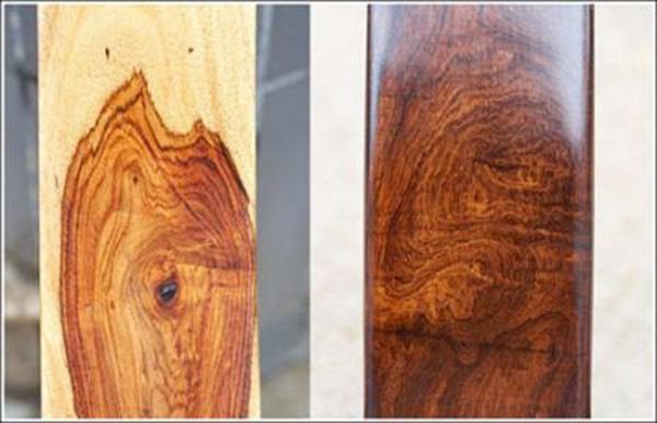 gỗ Sưa Bắc
